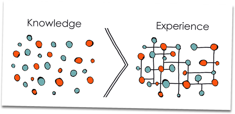 Knowledge, Experience, Connect The Dots